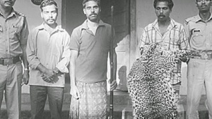 3_leopard-skin-India