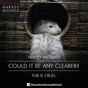 Harvey Nichols 2